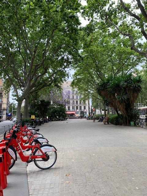 barcelona itinerary - riding bikes